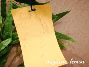 tanabata-4sai-musume-negai-2019