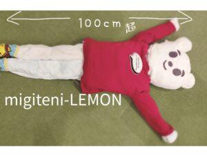 dakimakura-tedukuri-kantan-towel-item